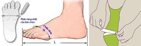 Vòng khớp ngón ở tư thế đứng và ngồi (cm)